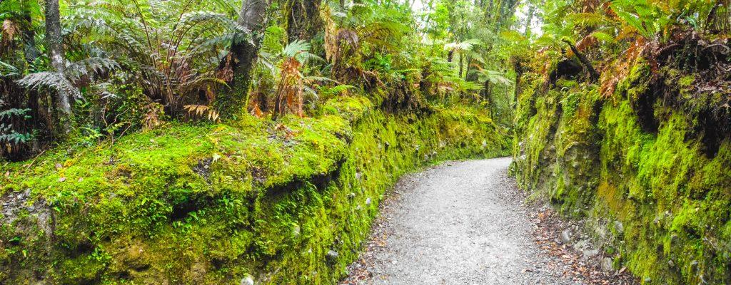 Caminos de hobbit - Nueva Zelanda isla del sur