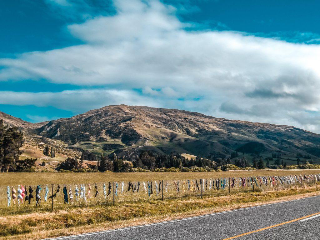 Carreteras Nueva Zelanda isla del sur