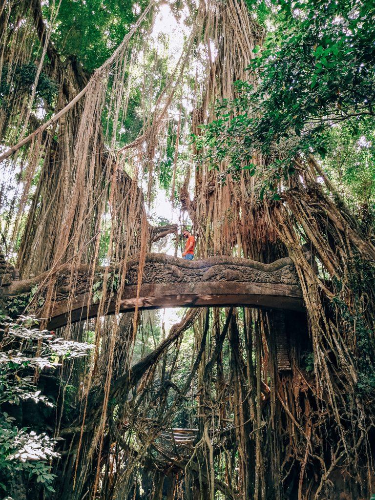 Puentes del bosque - Que ver en Ubud