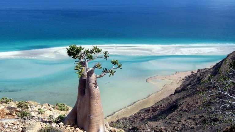 Socotra, destinos mas raros para viajar